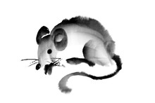 2020 Year Of The Rat.  Ink Cal...