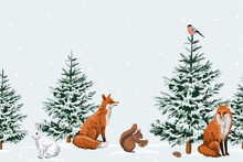 Christmas Trees, Red Fox, Whit...