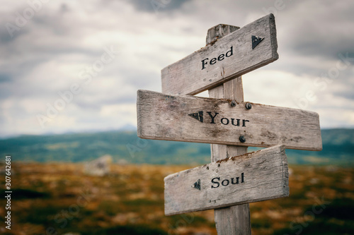 Vászonkép Feed your soul text on wooden rustic signpost outdoors in nature/mountain scenery