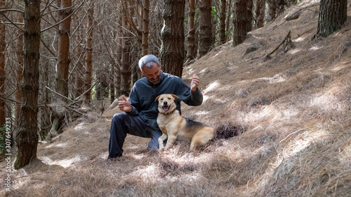 Happy and playfull dog with owner at pine trees forest Tablou Canvas