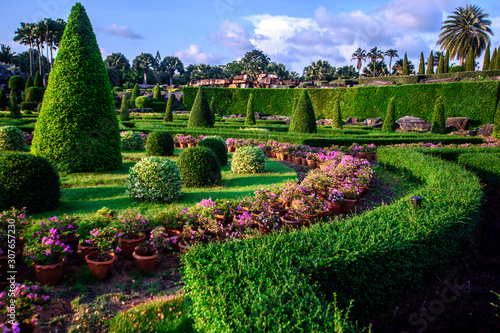 Landscape design in a tropical garden