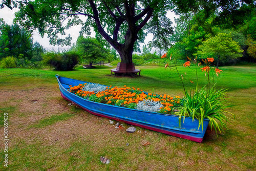 Flowers in Blue Boat