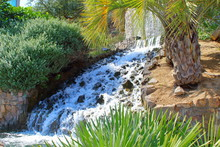A Small Decorative Waterfall On A Cliff. Palm Trees,  And Southern Evergreens. Landscaping.
