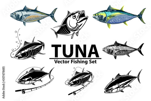 tuna big eye fishing logo illustration yellowfin tuna fish fishing vector emblem blue fin fish marine theme angry fish buy this stock vector and explore similar vectors at adobe stock tuna big eye fishing logo illustration