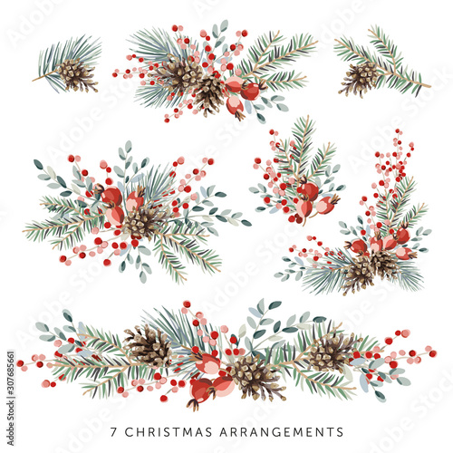 Christmas nature design arrangements collection, white background. Green pine, fir twigs, cones, red berries. Vector illustration. Greeting card, poster elements. Winter Xmas holidays