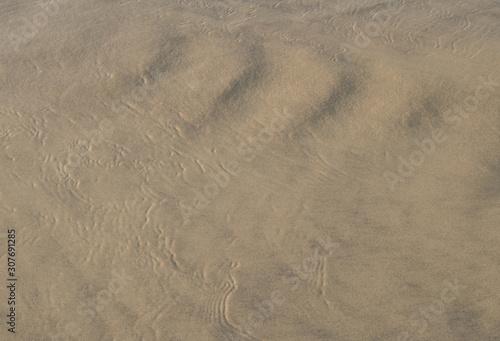 Cuadros en Lienzo sable