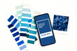 Smartphone with color of the year 2020 - Classic Blue and fashion colour swatches. Color trend palette.