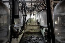 Abandoned Milking Machinery Se...