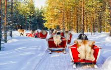 People On Reindeer Sleigh In F...