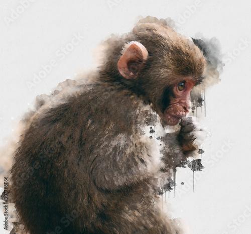 cyfrowe-malarstwo-akwarela-malpy