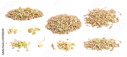Fotografie, Obraz Set of sprouted green buckwheat grains isolated on white