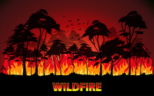 Forest Fires Vector, Wildfire
