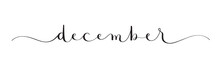 DECEMBER Black Vector Brush Calligraphy Banner With Swashes