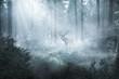 canvas print picture - Hirsch im nebeligen Wald