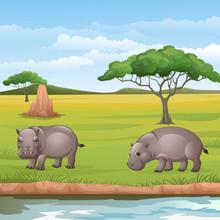 Cartoon Two Hippos In The Savannah
