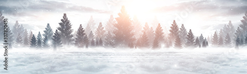 Winter abstract landscape. Sunlight in the winter forest. Panorama of forest landscape in winter. Bright winter nature scene. - 307820451