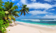 canvas print picture Paradise Sunny beach with palms and turquoise sea. Summer vacation and tropical beach concept.