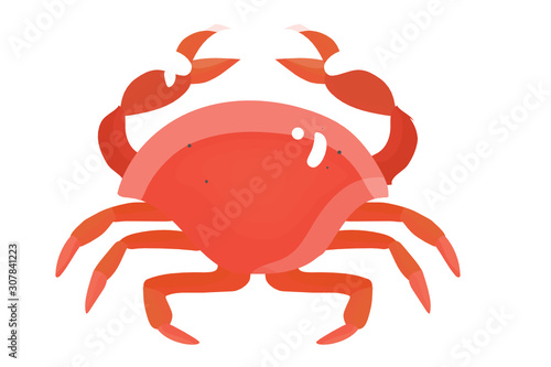 Colorful red crab vector illustration Wallpaper Mural