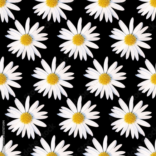 3D Rose Close up of a Beautiful Yellow and White Daisy Flower Isolated Wall Clock 15 x 15