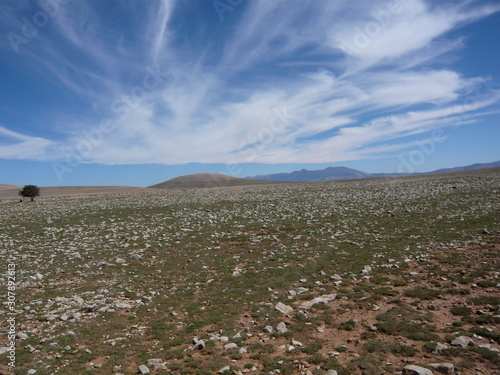 Rocky green plain, with, distant, mountains, and, clouds Canvas Print