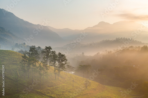 Fototapeta Panoramic view of forest and mountains, summer landscape with foggy hills at sunrise obraz na płótnie