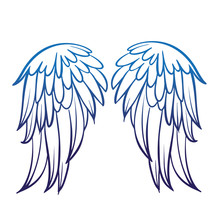 Pair Of Spread Eagle Or Angel Wings