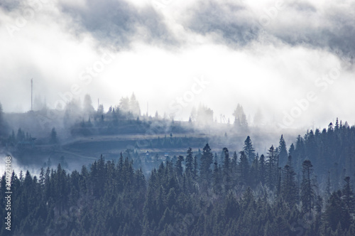 Canvas Prints Morning with fog The view from the heights of the mountains and forests covered by fog
