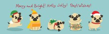 Vector Illustration Of Pugs An...