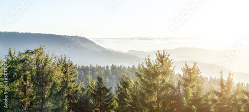 Fototapeta Amazing panorama background banner long from a fog landscape in the morning in black forest obraz