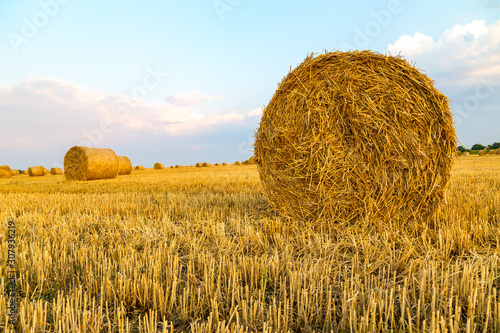 Photo Filed with bales of straw against the cloudy sky