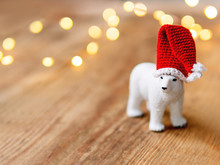 Cute Polar Bear In Santa's Hat...