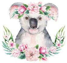 A Poster With A Koala. Watercolor Cartoon Koala Tropical Animal Illustration. Jungle Exotic Summer Print.