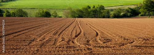 Obraz Champ et terre agricole en campagne Française - fototapety do salonu