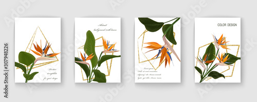 Obraz Wedding invitation with Strelitzia  flowers. Vector watercolor.  Vector illustration.  - fototapety do salonu