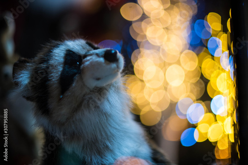 Photo Raccoon sits in front of the Christmas tree and garlands