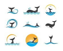 Whale Tail Icon Vector Illustr...