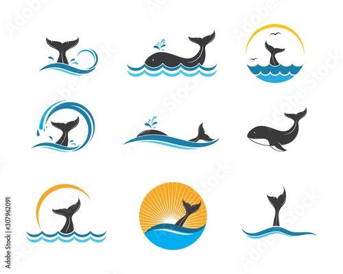 Cuadros en Lienzo whale tail icon vector illustration design
