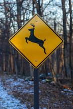 Deer Crossing Street Sign In Snow Vertical