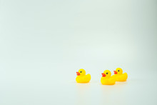 Yellow Duck Isolated In White ...