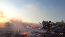 2019 - Ground Fire Burns As Firefighters Battle A Burning Structure During The Easy Fire Wildfire Disaster In The Hills Near Simi Valley Southern California.