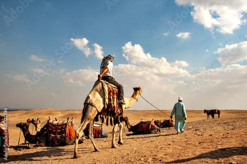 Desert cruising on camel beside Giza pyramid Wallpaper Mural