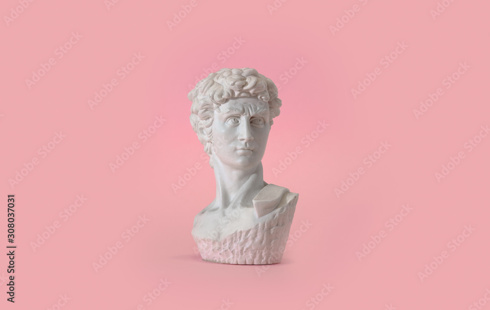 Fototapeta Statue bust on pink background