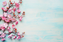 Pink Flowers On Blue Wooden Ba...