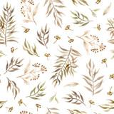 akwarela gałęzie, liście i zioła. ręcznie malować wzór na białym tle - 308091832