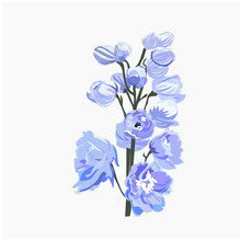Stock Vector Realistic Illustration Of A Delphinium Flower Branch. Isolated On White Background. Blue Spring Fresh Delicate Flowers Buds For Postcard, Wedding Invitation. Peonies