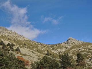 Autumn in the valley of La Barranca in the Sierra de Guadarrama National Park. Madrid's community. Spain