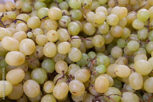 White grape bunch