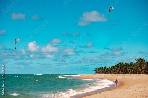 Praia Natureza Drone Coqueiros Litoral Maceió Alagoas Brasil Canvas Print