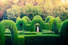 The Parc Del Laberint D'Horta ...