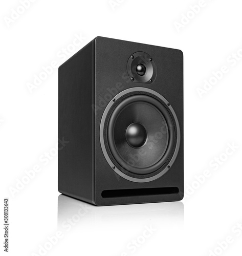 Tela Black speaker isolated on a white background.